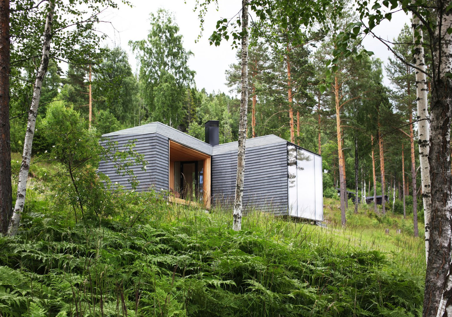 Contemporary residence in the forest