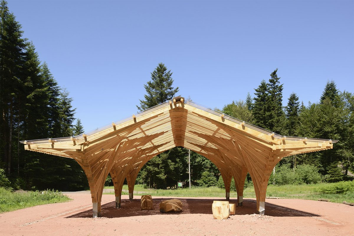 Wooden pavilion in the forest