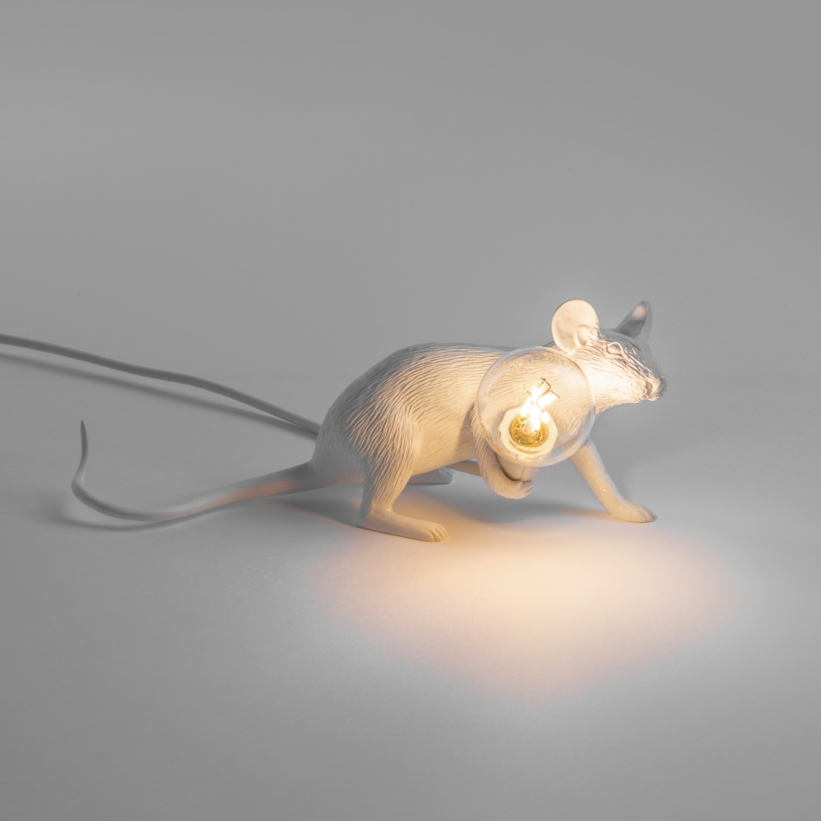 Mouse with lamp